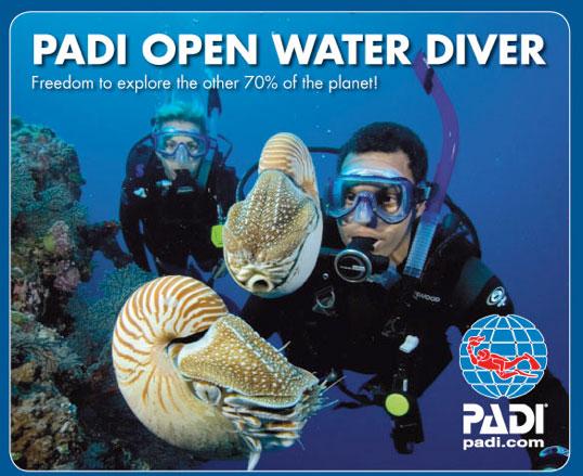PADI-Openwater-Course-Logo