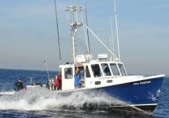 Local Dive Boat Trips 2016